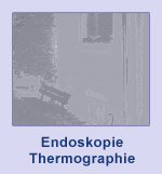 Endoskopie, Thermographie